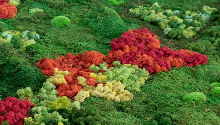 Un jardín japonés: Topografías del vacío - Le Cool Madrid