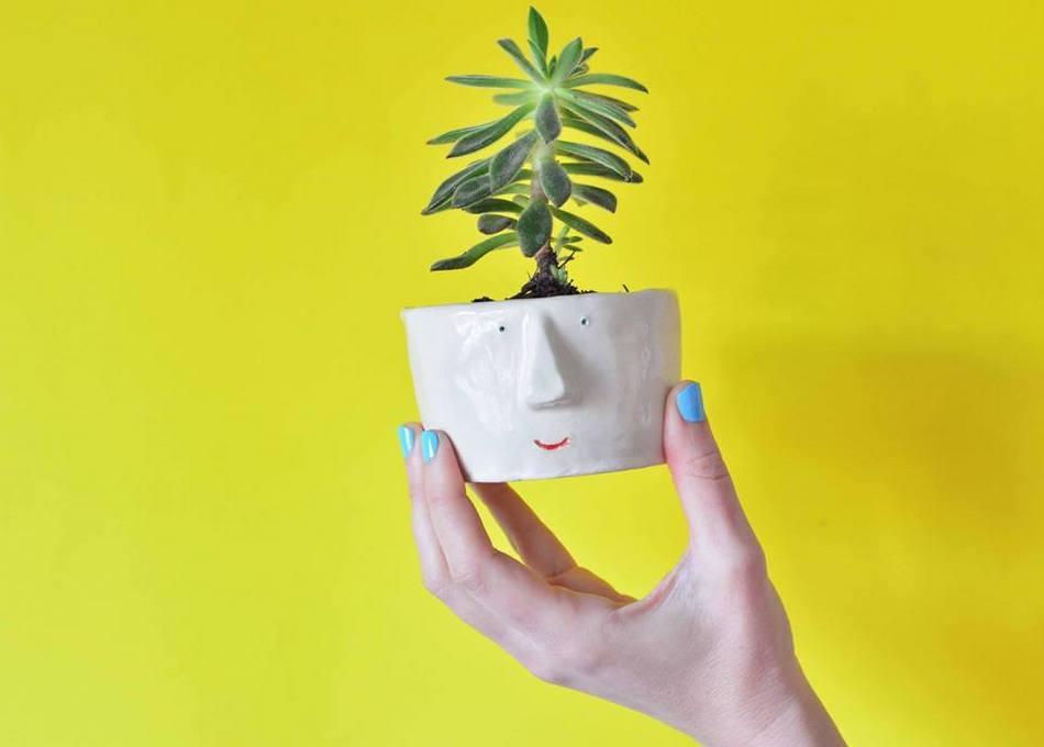 1-Diseñadores_Pompilio_plants_