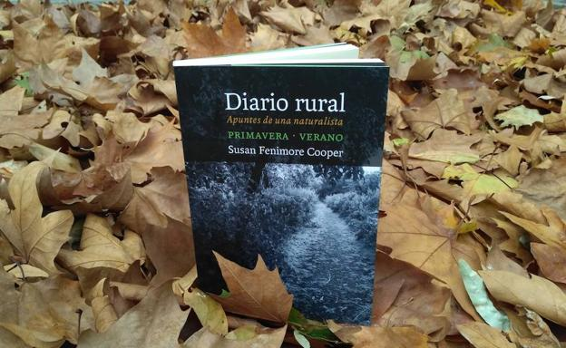 diario rural