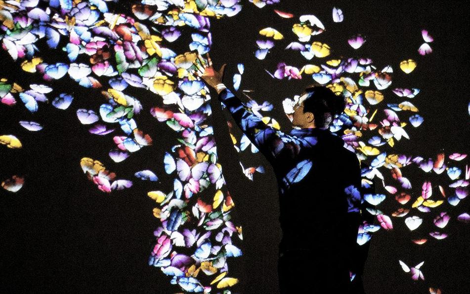 1-Butterflies-Beyond-Borders.1400x600-1400x600