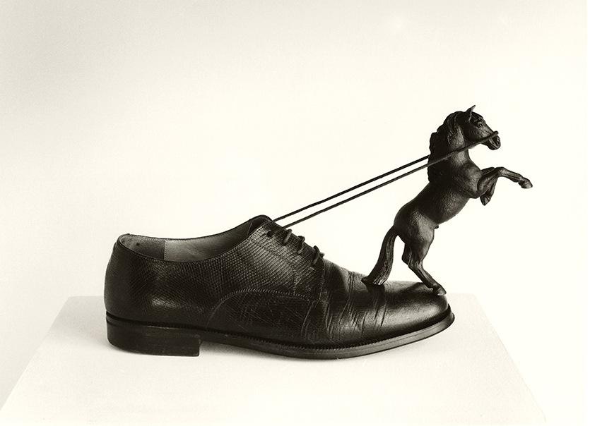 2-14_-zapato-caballo_50x60_e15
